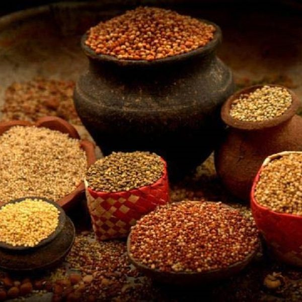 Organic Millets & Seeds